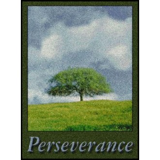 PERSEVERANCE Indoor Floor Mat